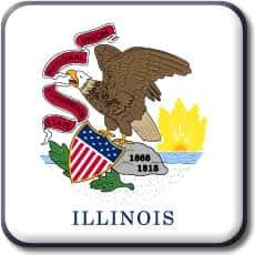 Illinois State Flag Icon