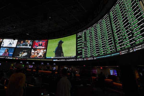 Physical Sportsbook