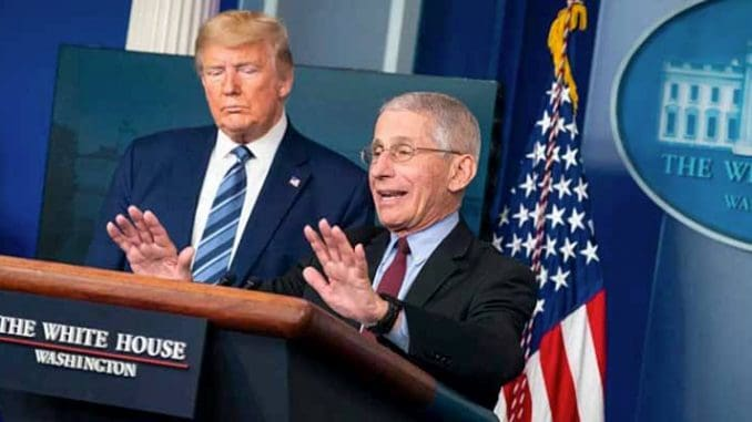 Dr. Fauci and President Trump at a news conference